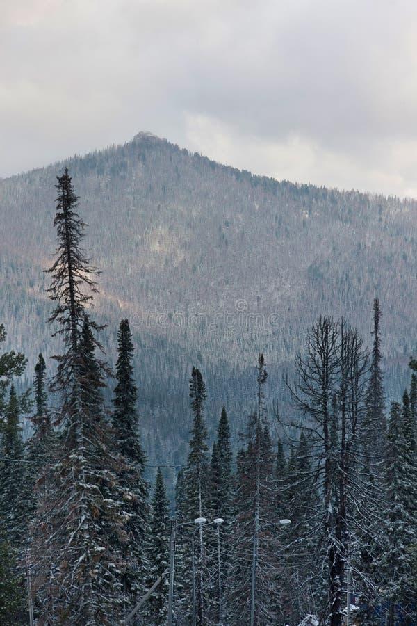 Download Horizontal de montagne photo stock. Image du beauté, nuage - 56488798