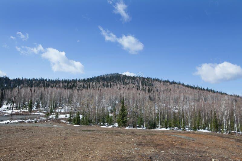 Download Horizontal de montagne photo stock. Image du nature, outdoors - 56489110