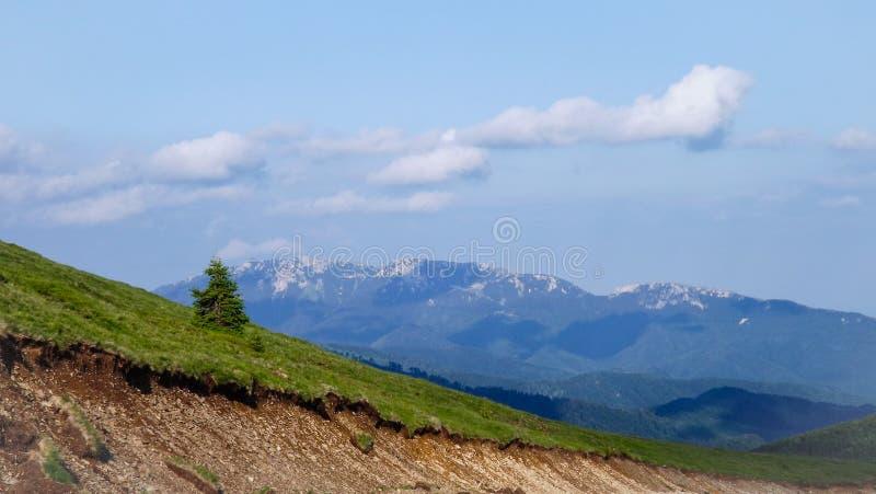 Horizontal de montagne photos stock