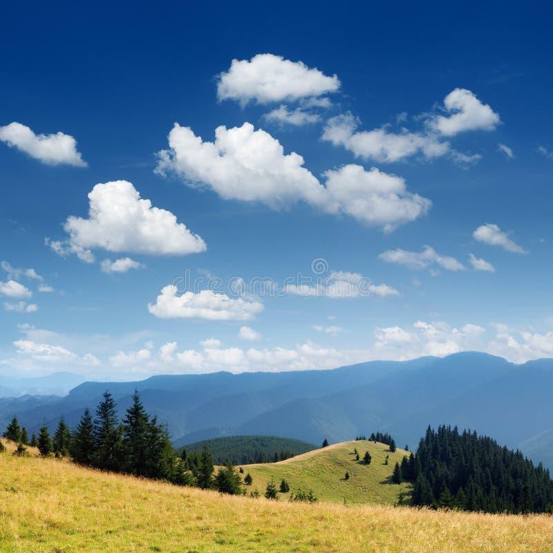 Horizontal de montagne d'été photo stock
