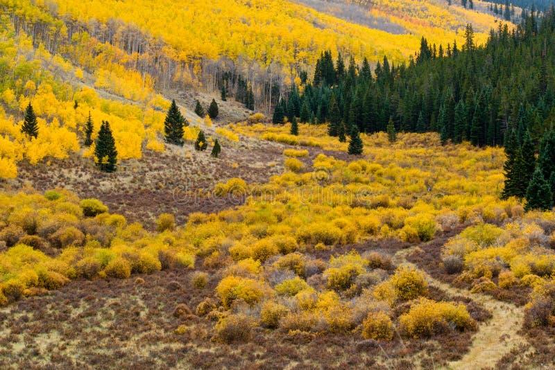 Horizontal de montagne d'automne du Colorado image stock