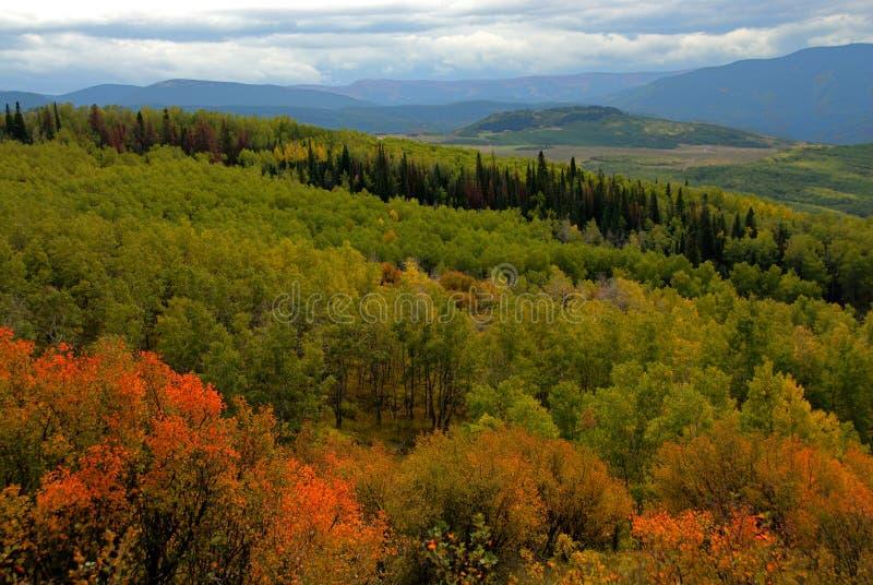 Horizontal de montagne en automne images libres de droits