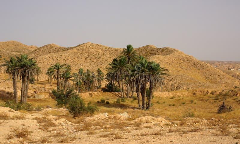 Horizontal de montagne en Tunisie, Afrique photographie stock libre de droits