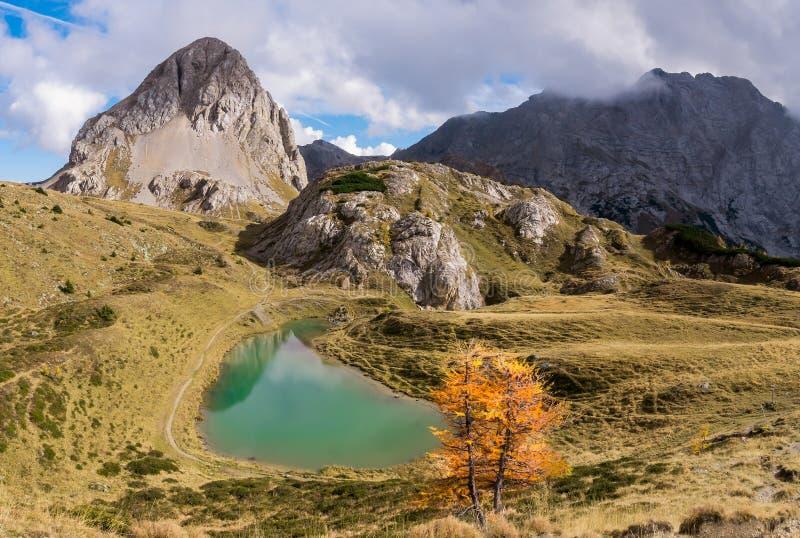 Horizontal de montagne Montagnes, lac et arbres de mélèze dans la chute fri image stock