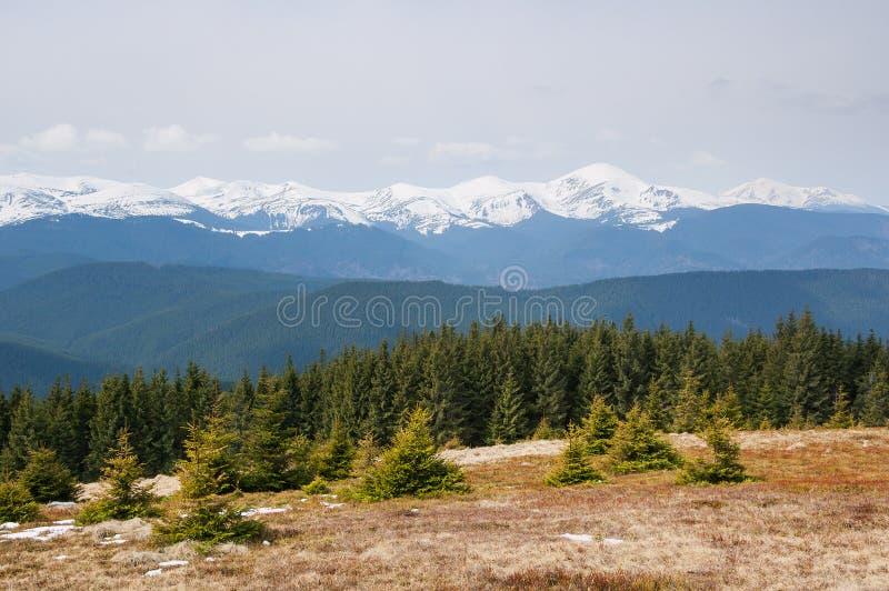 Horizontal de montagne de source images stock