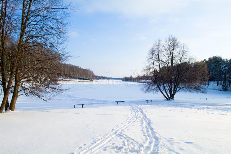 Horizontal de neige de l'hiver photo stock