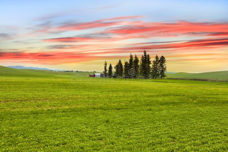 Horizontal de Palouse photographie stock
