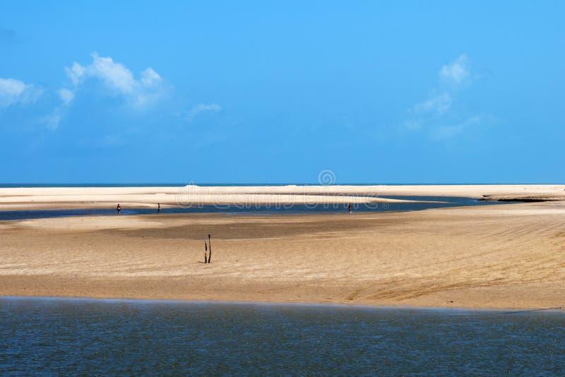 Horizontal de plage et de mer photos libres de droits