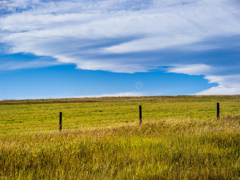 Horizontal de prairie photo stock