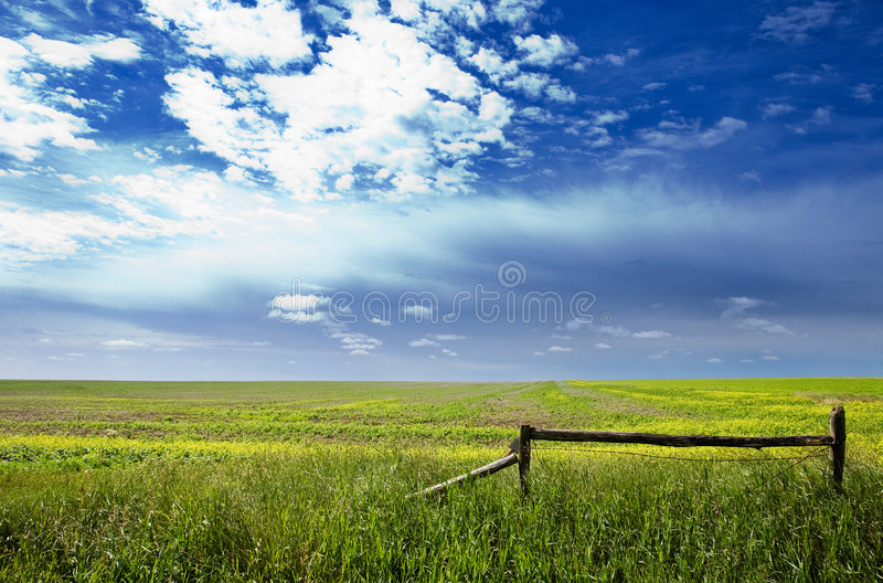 Horizontal de prairie image libre de droits