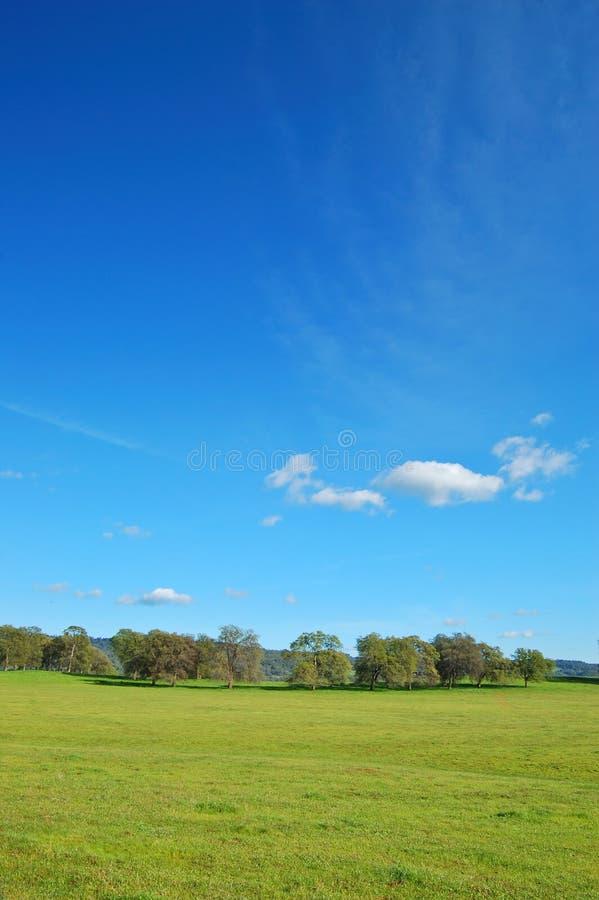 Horizontal de printemps images stock