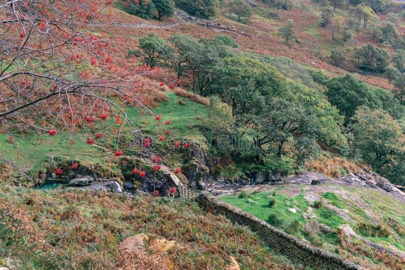 Horizontal de Snowdonia photo libre de droits
