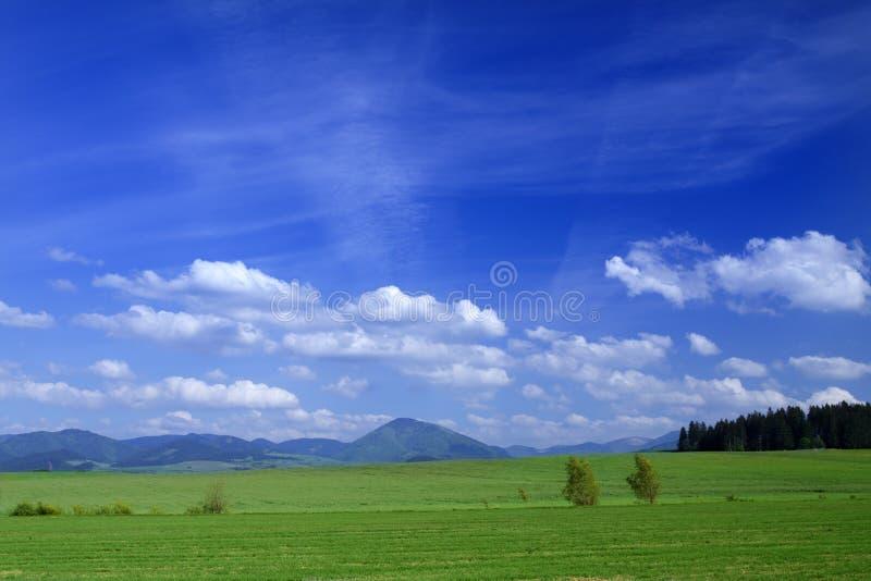 Horizontal de source photographie stock libre de droits