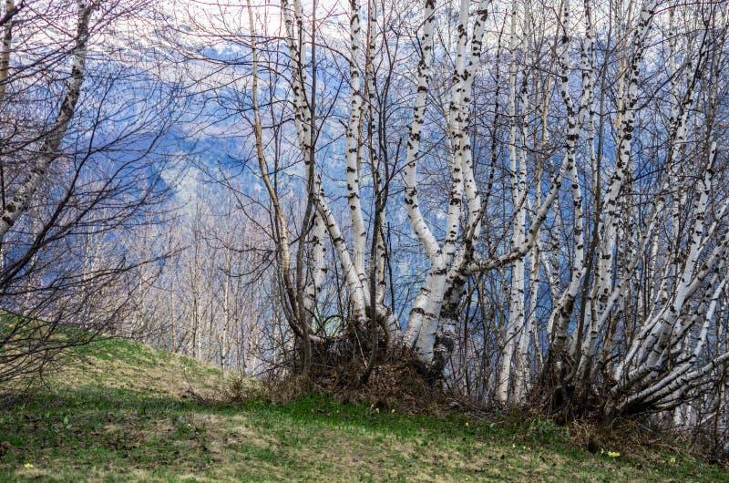 Horizontal de source dans les montagnes images stock