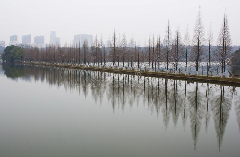 Horizontal de stationnement chinois image libre de droits