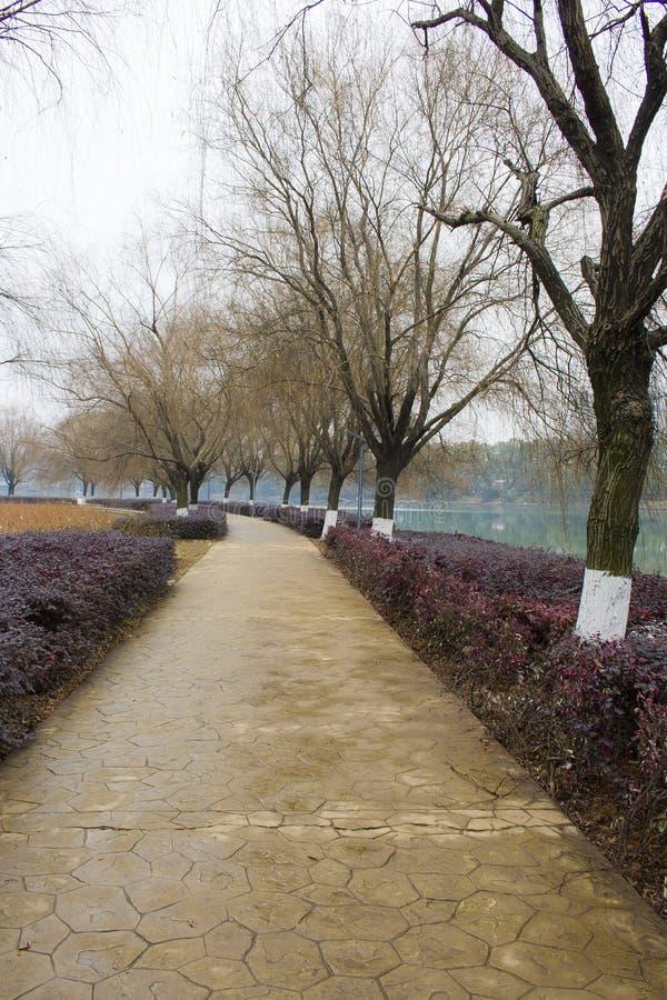 Horizontal de stationnement chinois image stock