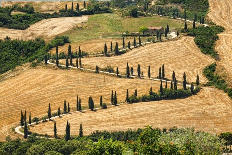 Horizontal de Tuscana - serpentines de route images stock