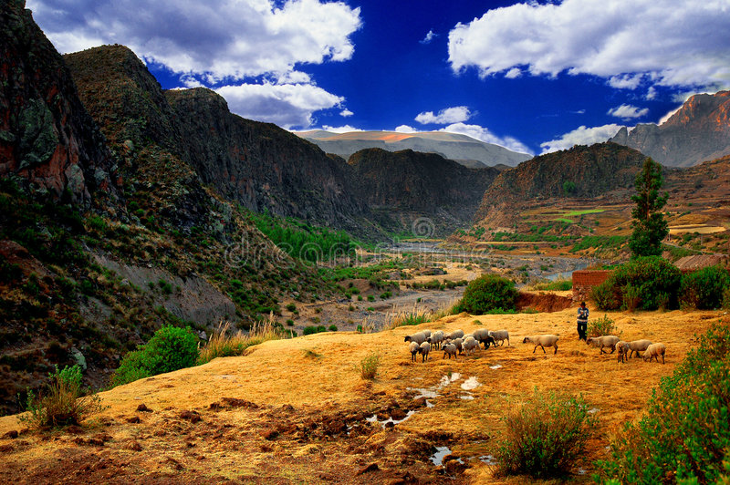 Horizontal de vallée de Colca, Pérou   photographie stock libre de droits