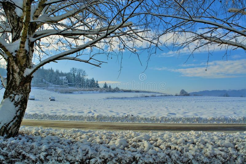 Horizontal en hiver photo stock
