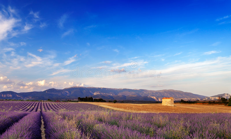 Horizontal en Provence, France photos stock