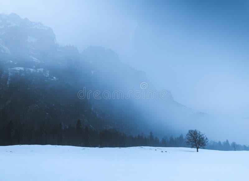 Horizontal en Suisse photographie stock libre de droits