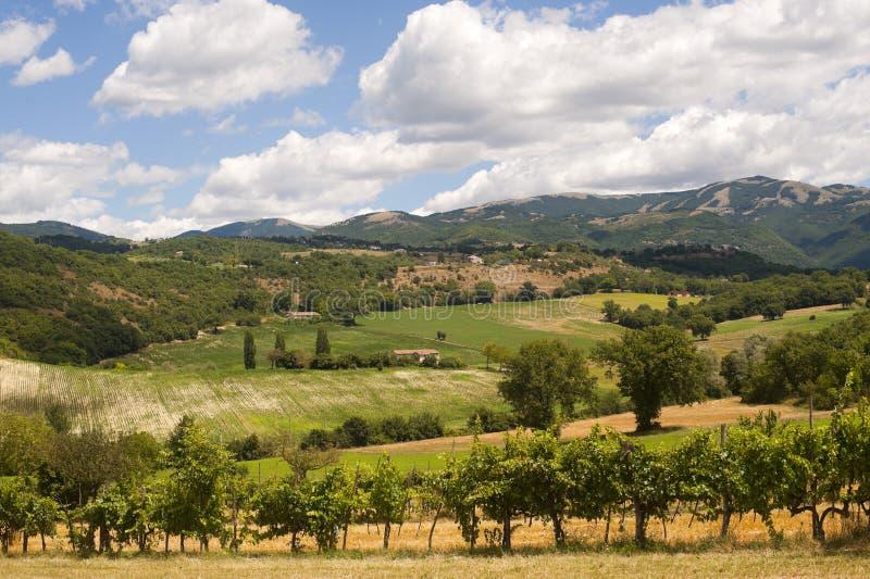 Horizontal entre le Latium et l'Ombrie (Italie) photo stock