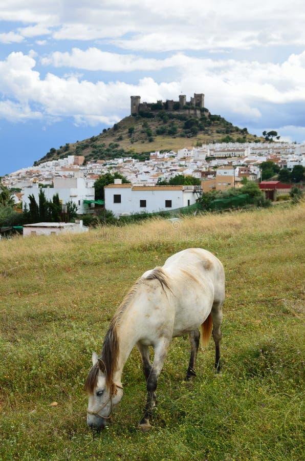 Horizontal espagnol avec un château et un cheval photos stock