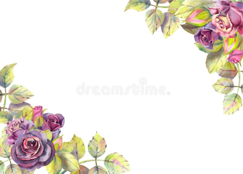 Horizontal frame with dark rose flowers. Compositions for the design of greeting cards or invitations. Vector illustration. Floral, purple, pink, wedding royalty free illustration