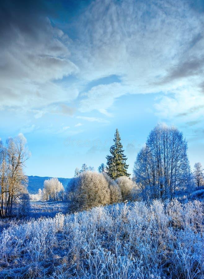 Horizontal gelé photographie stock libre de droits
