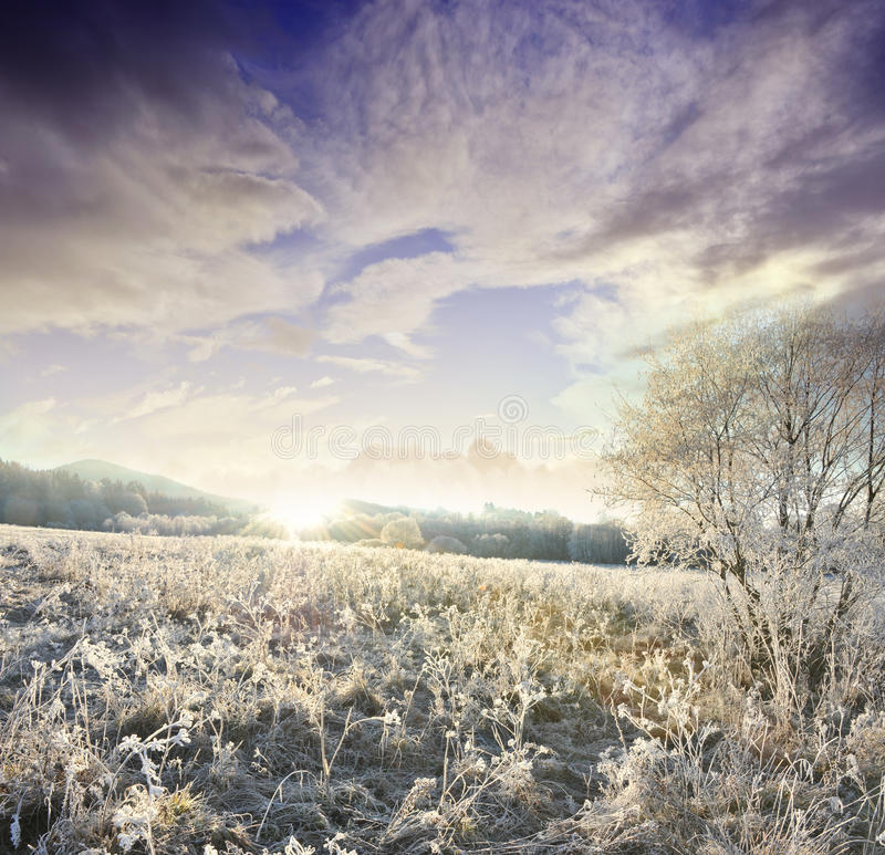Horizontal gelé photos libres de droits