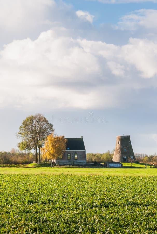 Horizontal hollandais d'automne avec un moulin à vent capless photographie stock