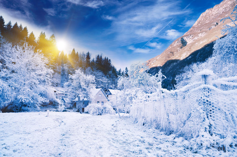 Horizontal idyllique de l'hiver. La Slovénie alpestre image libre de droits