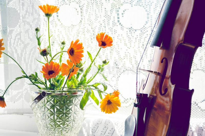 Horizontal image of the bottom half of violin with sheet music and flowers the front of the fiddle on windows. Close-up, concept art artistic background stock photography