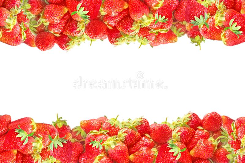 Horizontal levels or frame with fresh red summer fruits strawberries isolated on white background. Natural decoration for design royalty free stock photo