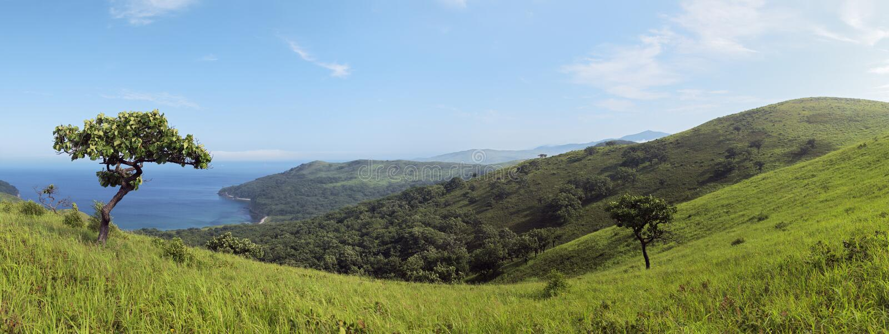 Horizontal littoral, panorama de rivage photo stock