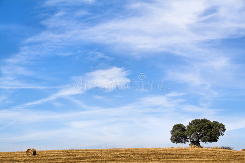 Horizontal méditerranéen de dolmen images libres de droits