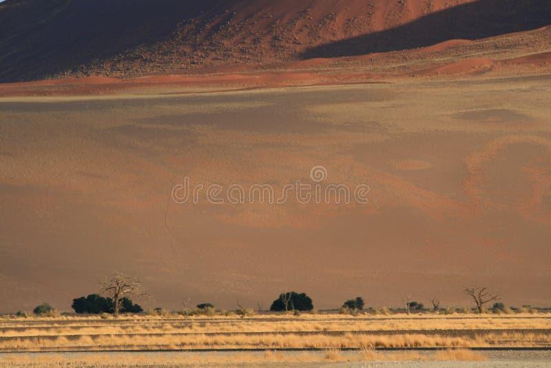 horizontal Namibien de désert photo libre de droits