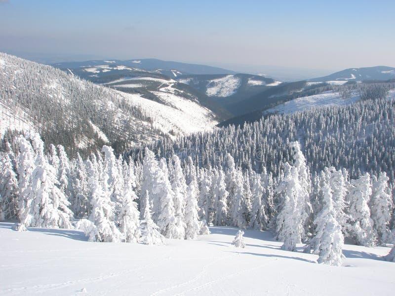 Horizontal neigeux de l'hiver tranquille photo stock