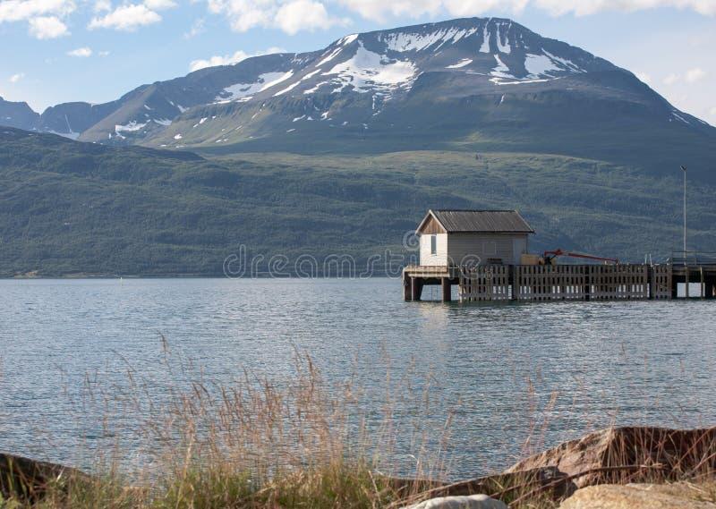 Horizontal norvégien images stock