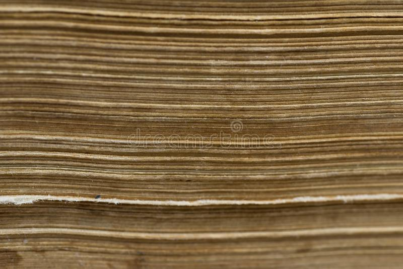 Horizontal old aged yellow book pages close up macro shot royalty free stock image