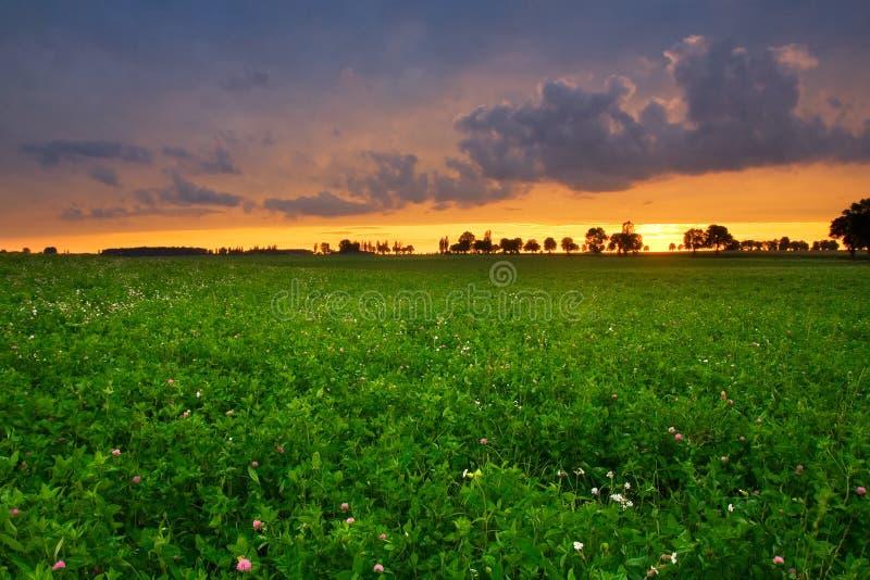 Horizontal orageux photo libre de droits