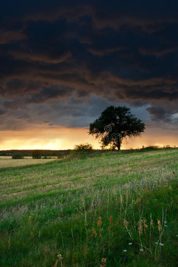 Horizontal orageux image libre de droits