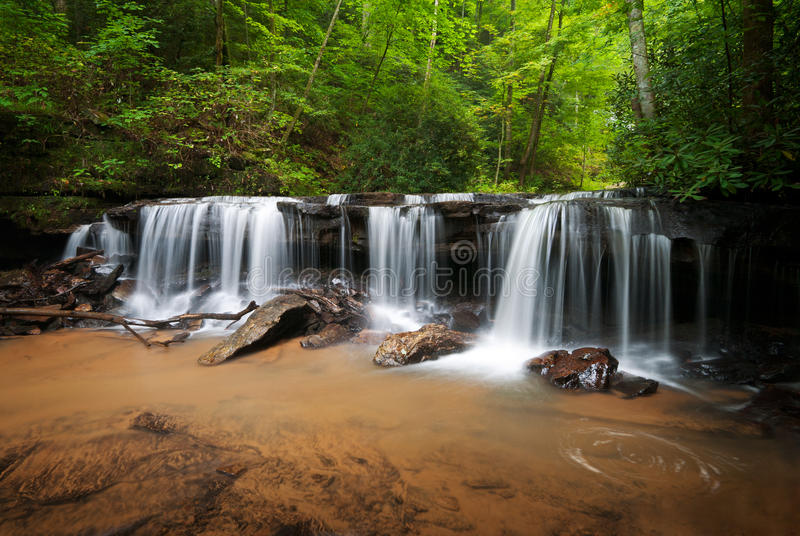 Horizontal paisible de cascades à écriture ligne par ligne de forêt photographie stock