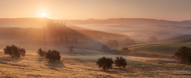 Golden Rays in Tuscany stock photos