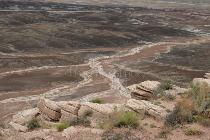Horizontal peint ahurissant de désert photo stock