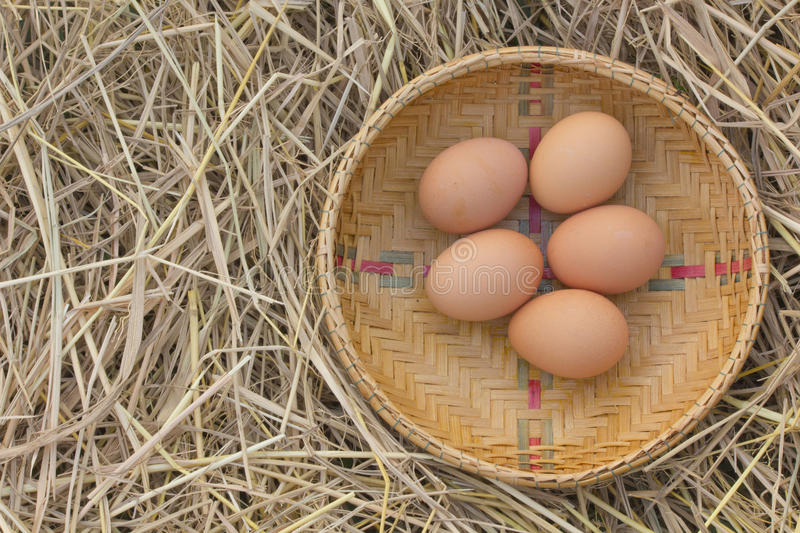 Horizontal photo of several hen eggs which are placed on nice haystack from dried straws and inside wicker basket. Light wooden wall is in background stock images