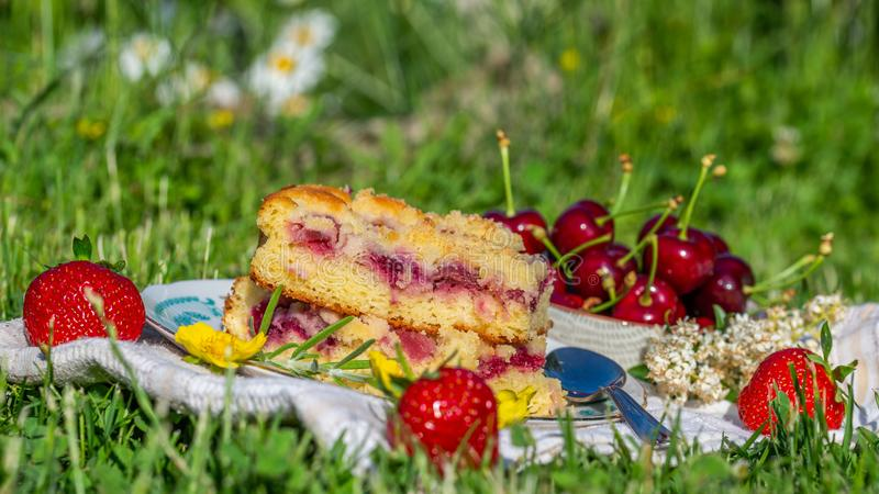 Portion of cherry cake with ripe strawberries around and yellow blooms stock photos