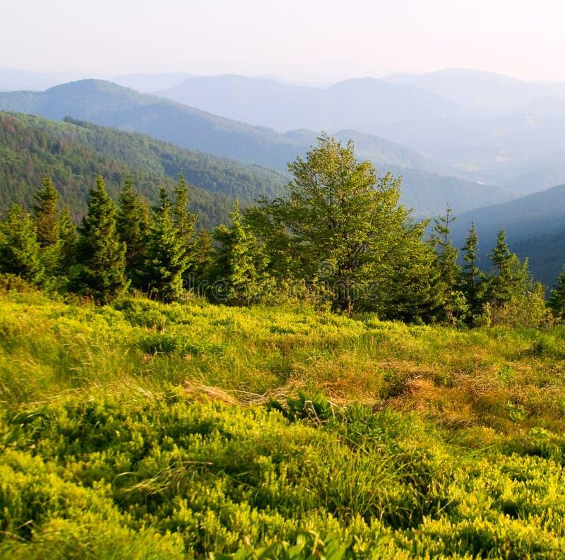 Horizontal posé de montagnes images stock