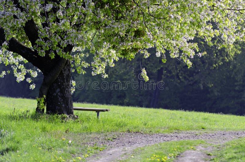 Horizontal rural image stock