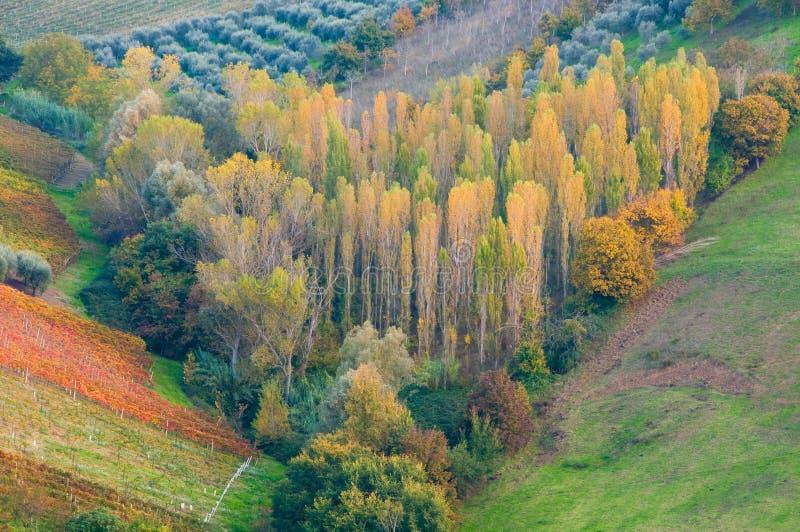 Download Horizontal rural photo stock. Image du automne, campagne - 77156492